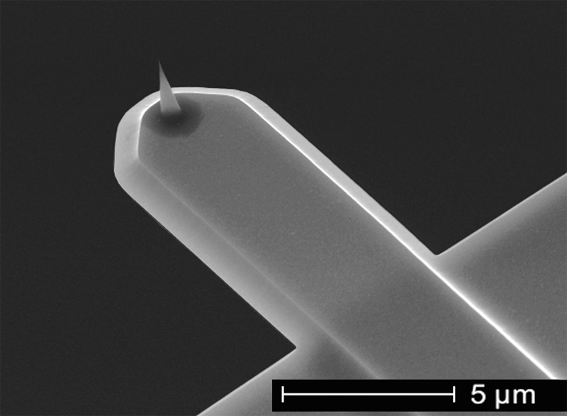 NanoWorld USC AFM tip for high-speed AFM