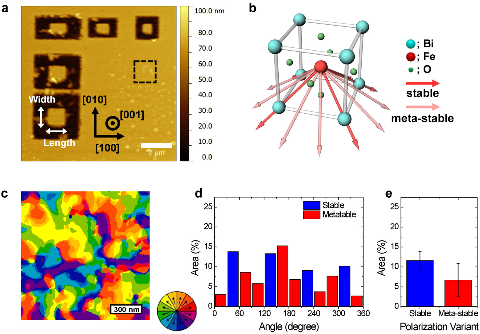 "Figure 1 from ""Ferroelectric Domain Studies of Patterned (001) BiFeO 3 by Angle- Resolved Piezoresponse Force Microscopy"": Patterned mesas are separated from the continuous film by lithography, as shown in the AFM topography image. (b) Schematic drawing of the atomic structure of BFO with angle-resolved polarization models. The Fe (red sphere) atom can be displaced towards twelve possible polarization orientations with respect to its centrosymmetric position. (c) AR-PFM domain map of a 1.2 × 1.2 μm2 area of unpatterned BFO film, corresponding to the black dashed area in (a). (d) The area distribution of each polarization variant according to angle relative to the [100] direction. (e) The average area of stable and meta-stable polarization variants."