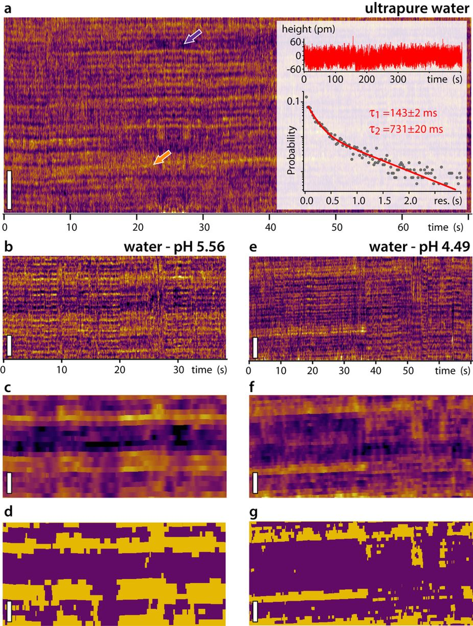 "Figure 3 from: ""Ricci, M. et al. Direct observation of the dynamics of single metal ions at the interface with solids in aqueous solutions."""