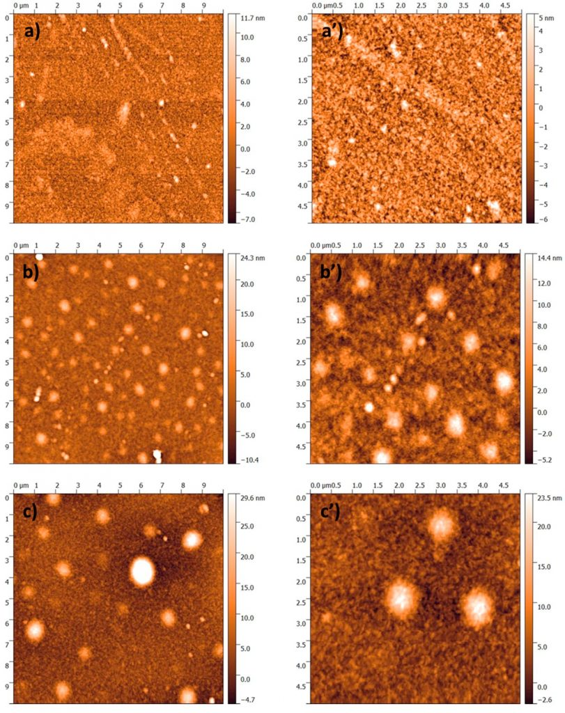 "Figure 2 from ""New Insights in the Ion Beam Sputtering Deposition of ZnO-Fluoropolymer Nanocomposites"" by Maria Chiara Sportelli et al.: Atomic force microscopy (AFM) micrographs of ZnO-CFx nanocomposites having an inorganic phase volume fraction of φ = 0.05 (a–a'), φ = 0.10 (b–b'), and φ = 0.15 (c–c'). NanoWorld Pointprobe® NCL AFM probes were used."