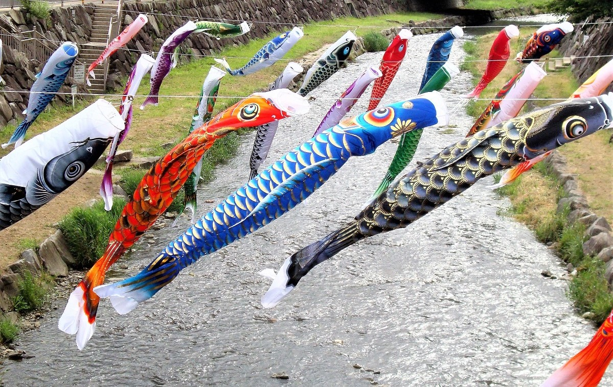 koinobori - carp streamers on children's day in Matsumoto Japan