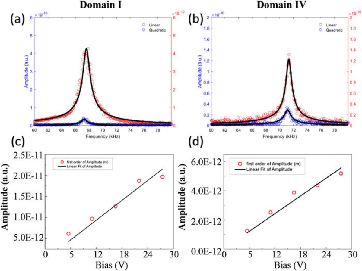 "FIG. 6 from ""Piezoelectricity of green carp scales "" by H. Y. Jiang et al.: First and second harmonic responses of (a) domain I and (b) domain IV. The straight line fitting for the amplitude of first harmonic response of (c) domain I and (d) domain IV by applying a series of bias. NanoWorld Arrow-CONTPt AFM probes were used."