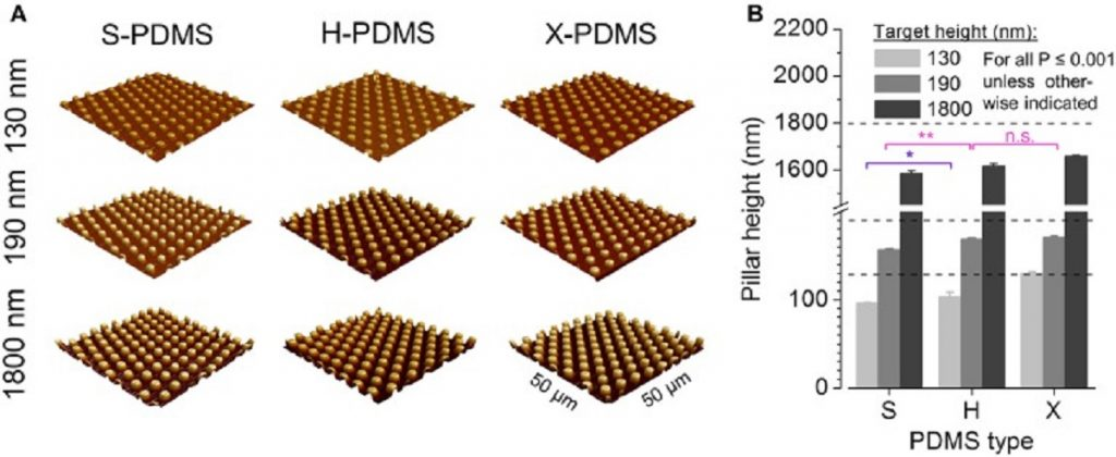 "Figure 5 from ""Nano- and Micro-Patterned S-, H-, and X-PDMS for Cell-Based Applications: Comparison of Wettability, Roughness, and Cell-Derived Parameters"" by Marina Scharin-Mehlmann et al.: AFM analysis of structured PDMS substrates. (A) Three-dimensional reconstructions of fabricated pillar-structured PDMS substrates recorded by AFM. (B) Mean pillar height of plane S-, H-, and X-PDMS as measured by AFM. All data are significantly different at a significance level of P ≤ 0.001 as evaluated by two-way ANOVA unless otherwise indicated. Color coding of statistical analysis: within group ""130 nm,"" purple; within group ""190 nm,"" pink."
