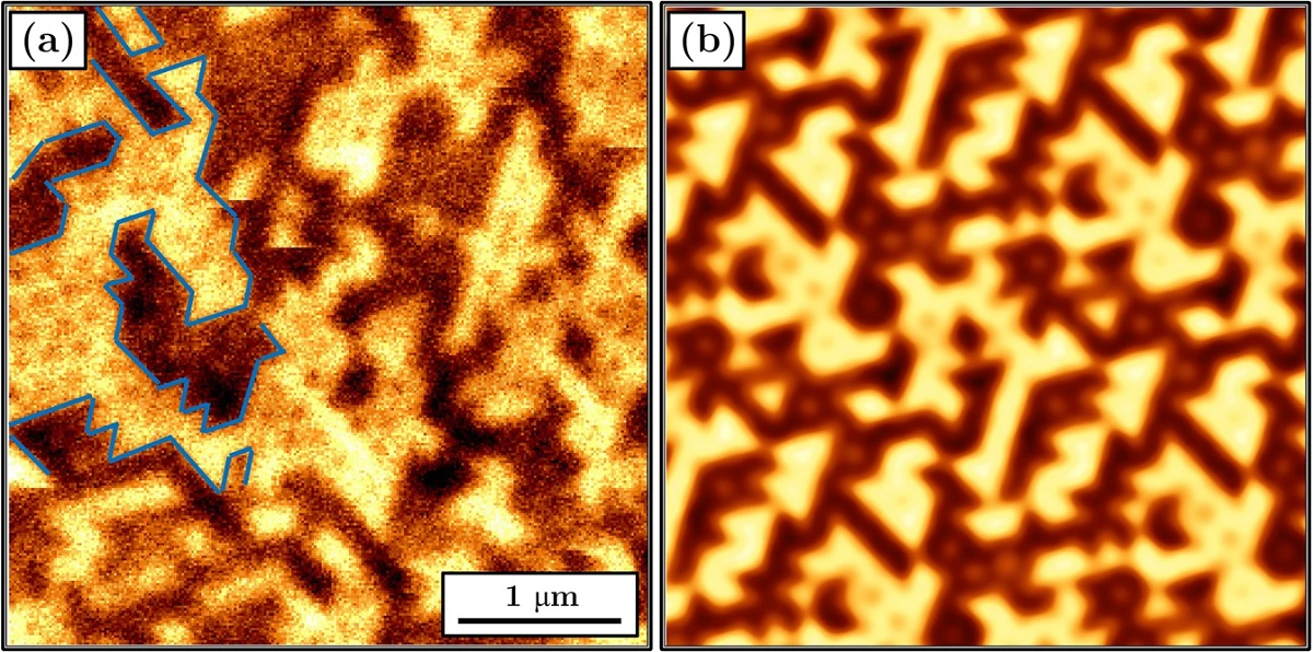 "Figure 8 from ""Magnetic reversal in perpendicularly magnetized antidot arrays with intrinsic and extrinsic defects"" by Michal Krupinski et al.: (a) MFM image for an array with an antidot diameter 182 nm taken in zero field after ac demagnetization. Selected domain walls were marked with a blue line. (b) Simulated MFM image for an antidot diameter of 185 nm corresponding to the magnetic moment configuration depicted in Fig. 6b. The MFM tip distance from the sample surface was 180 nm."