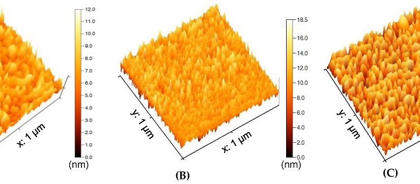 Graphene Quantum Dots as Nanozymes for Electrochemical Sensing of Yersinia enterocolitica in Milk and Human Serum