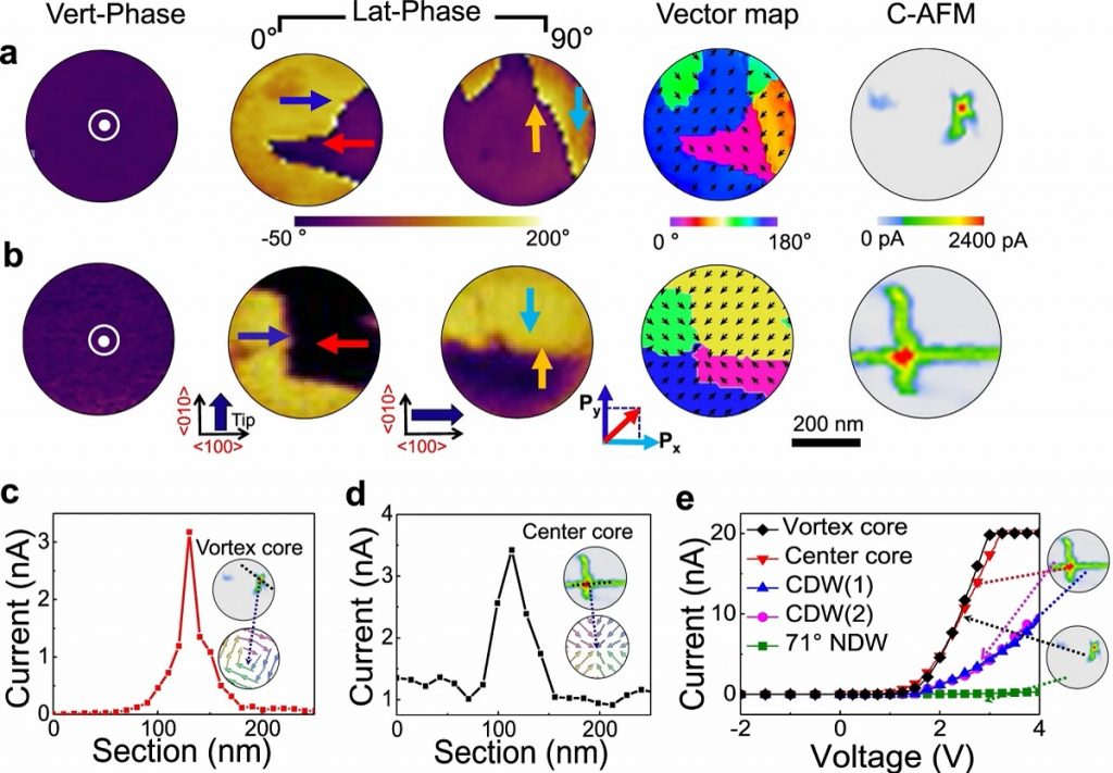 Quasi-one-dimensional metallic conduction channels in exotic ferroelectric topological defects - news