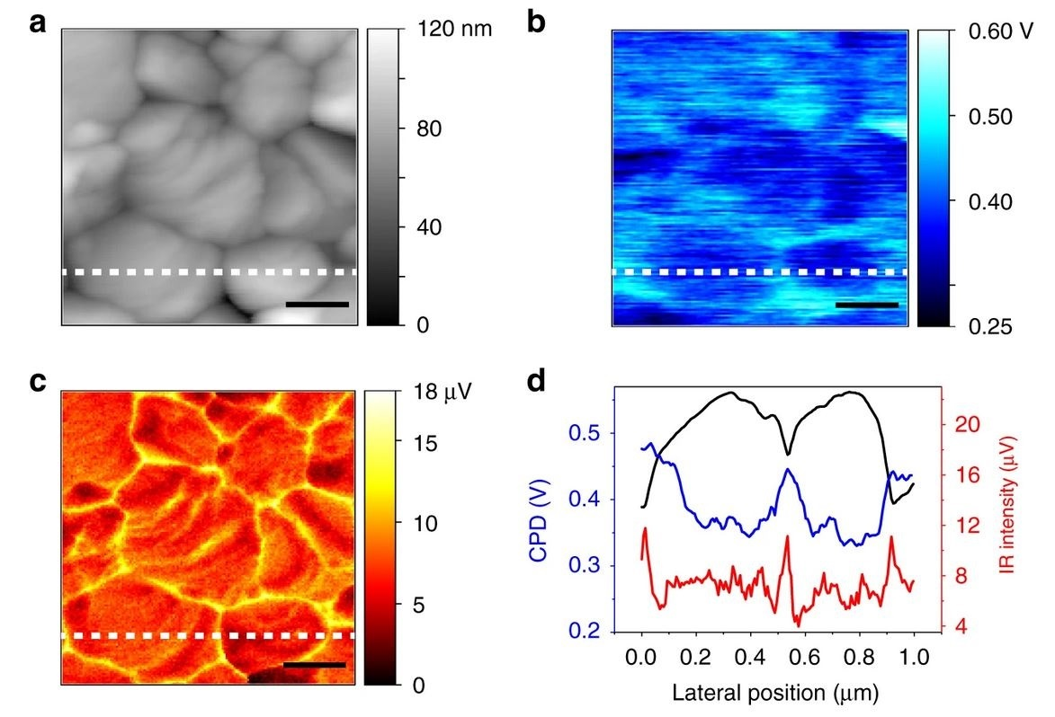 Quantification of electron accumulation at grain boundaries in perovskite polycrystalline films by correlative infrared-spectroscopic nanoimaging and Kelvin probe force microscopy - news